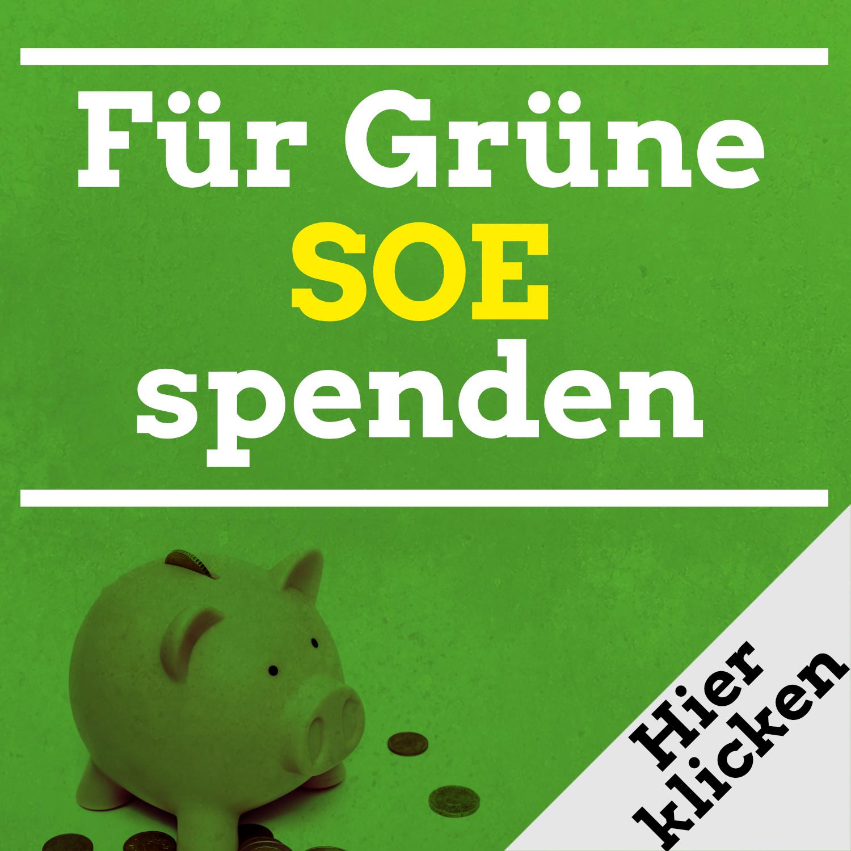 Für Grüne SOE und Pirna spenden