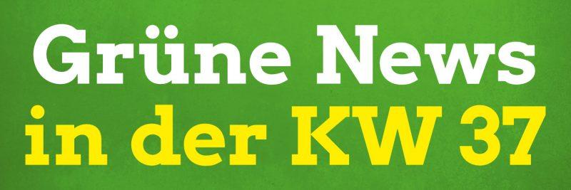 Die ersten Pirnaer Grüne News mit diesen Themen: digitaler Bundesparteitag, Warntag 2020, HTSL-Kabel für Strom, E-Mobilität als Trend- und Hassthema, Appelle an die Regierung, plastikfreies Pirna und mehr.
