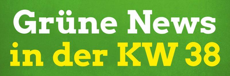 Themen in den Pirnaer Grüne News zur KW 38 in 2020 sind u. a. die Situation bei Moria, ein Pfand auf Batterien und Akkus, Uploadfilter, rechter Terror in Deutschland, die Zukunft von Solarstrom, und einiges mehr.