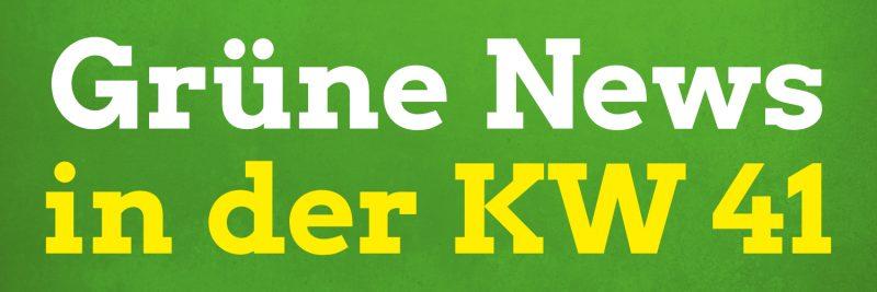 In den Pirnaer Grüne News der Kalenderwoche 41 von 2020 mit dabei: Neue Erinnerungstafel in Pirna, Netzwerk der Neuen Rechten auf Instagram, Klima- und Umweltschutz, steigende Covid-19-Zahlen und mehr.